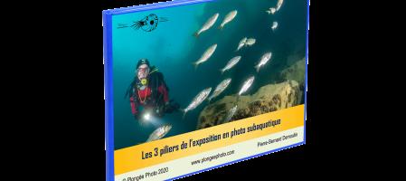 Les 3 piliers de l'exposition en photo subaquatique – Cadeau !