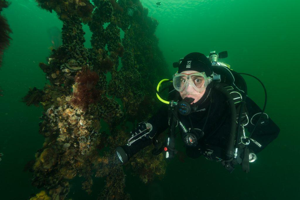 Plongée Zélande