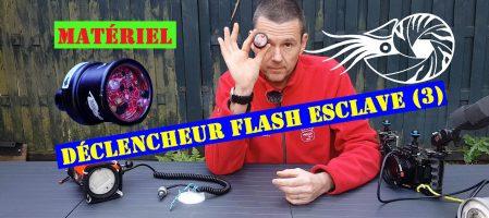 Anglerfish Trigger-Le plus versatile (Vidéo)