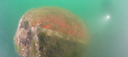 Comment photographier en grand-angle dans une eau très très chargée ?